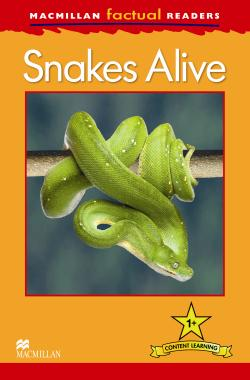 Macmillan Factual Readers: Snakes Alive