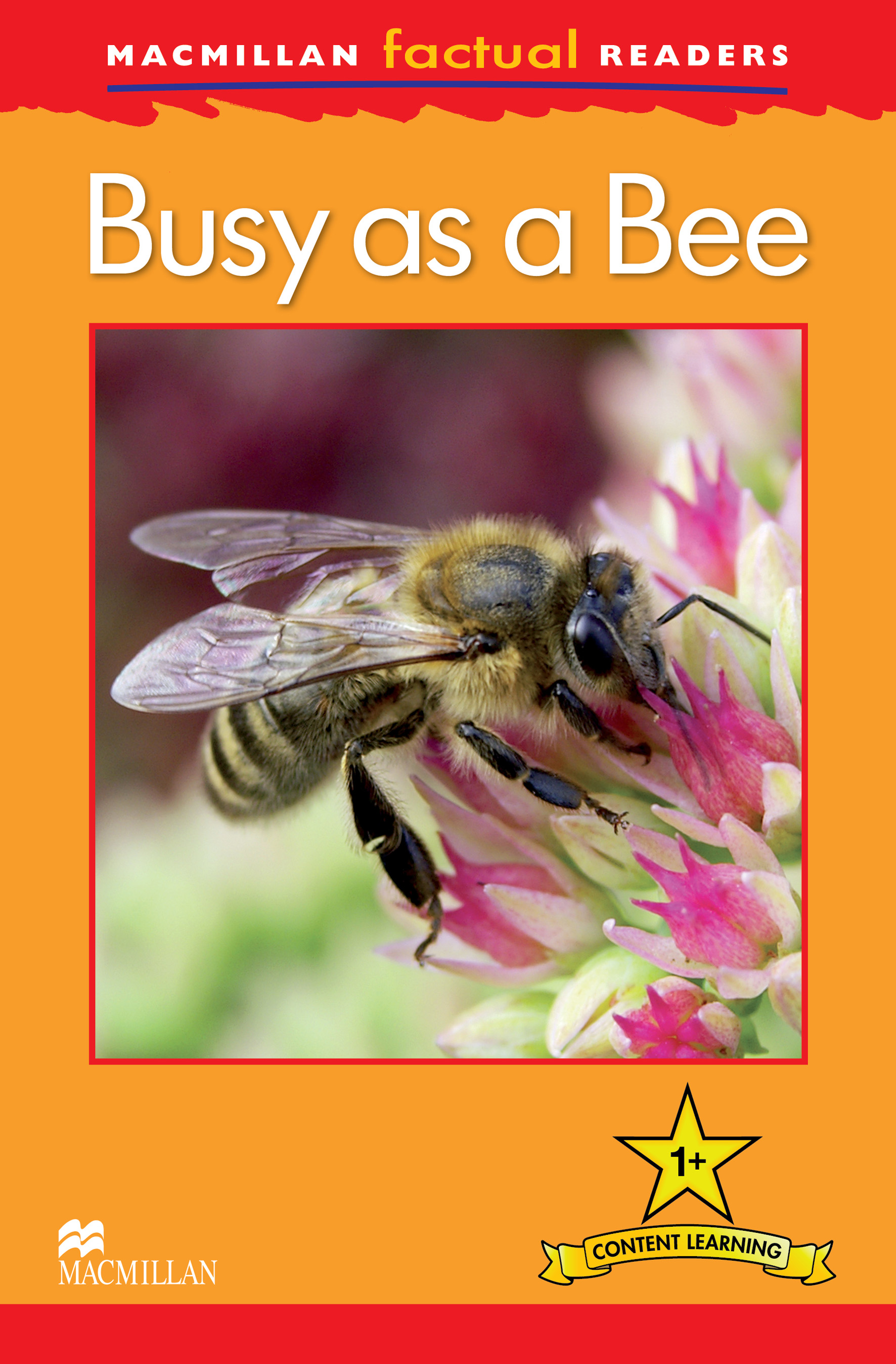 Macmillan Factual Readers: Busy as a Bee