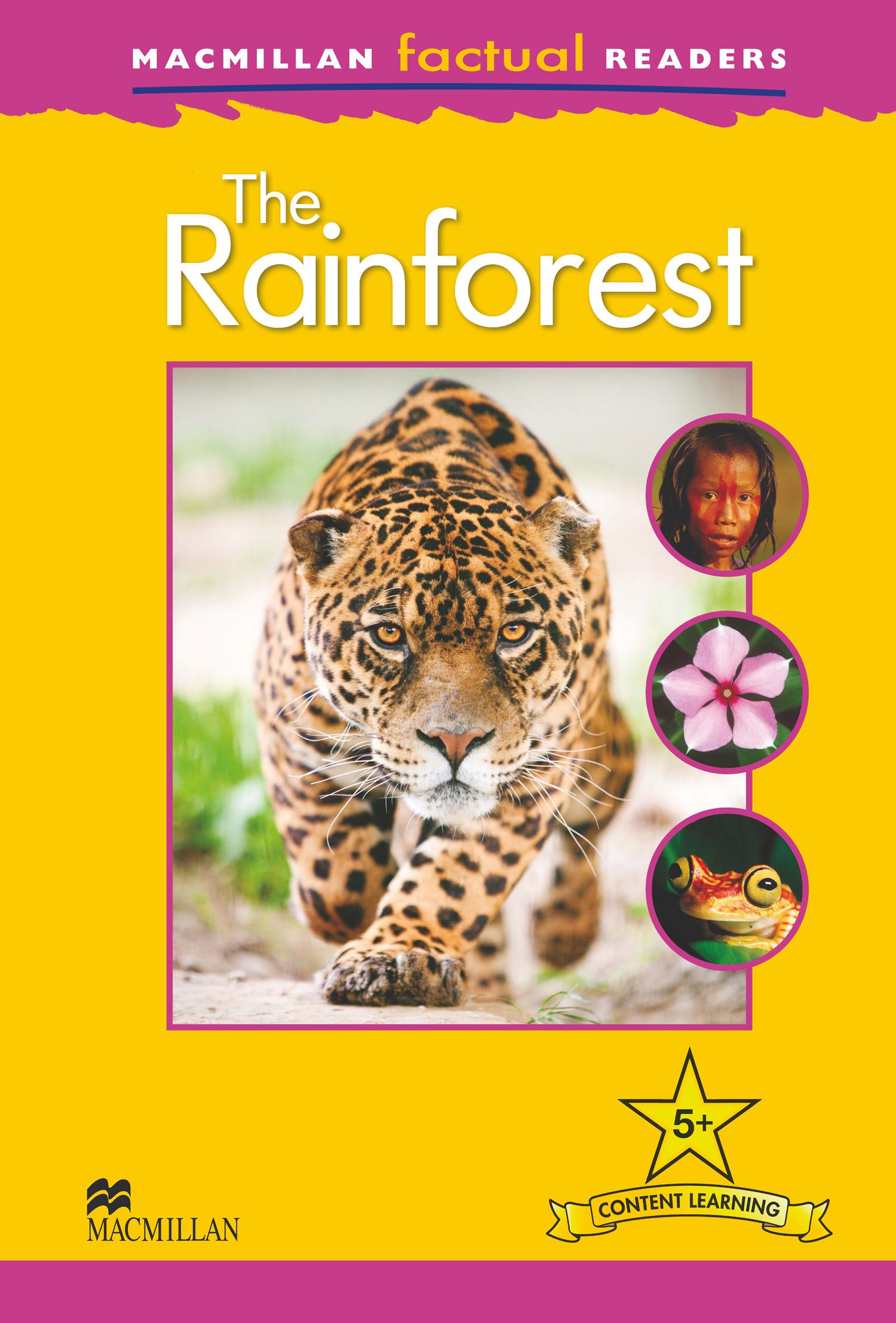 Macmillan Factual Readers: The Rainforest