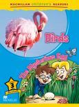 Birds / The Mysterious Egg