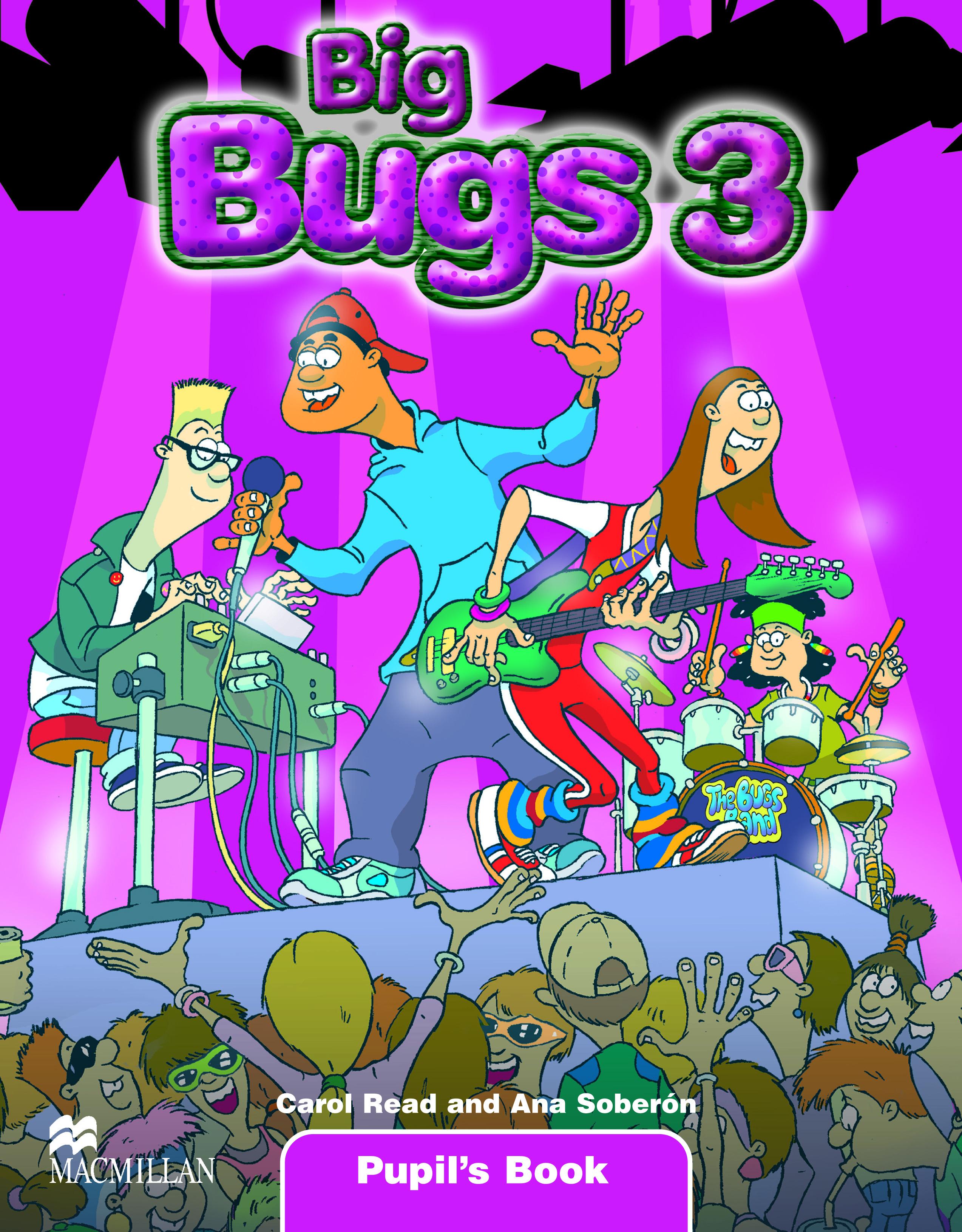 Big Bugs 3 Pupil