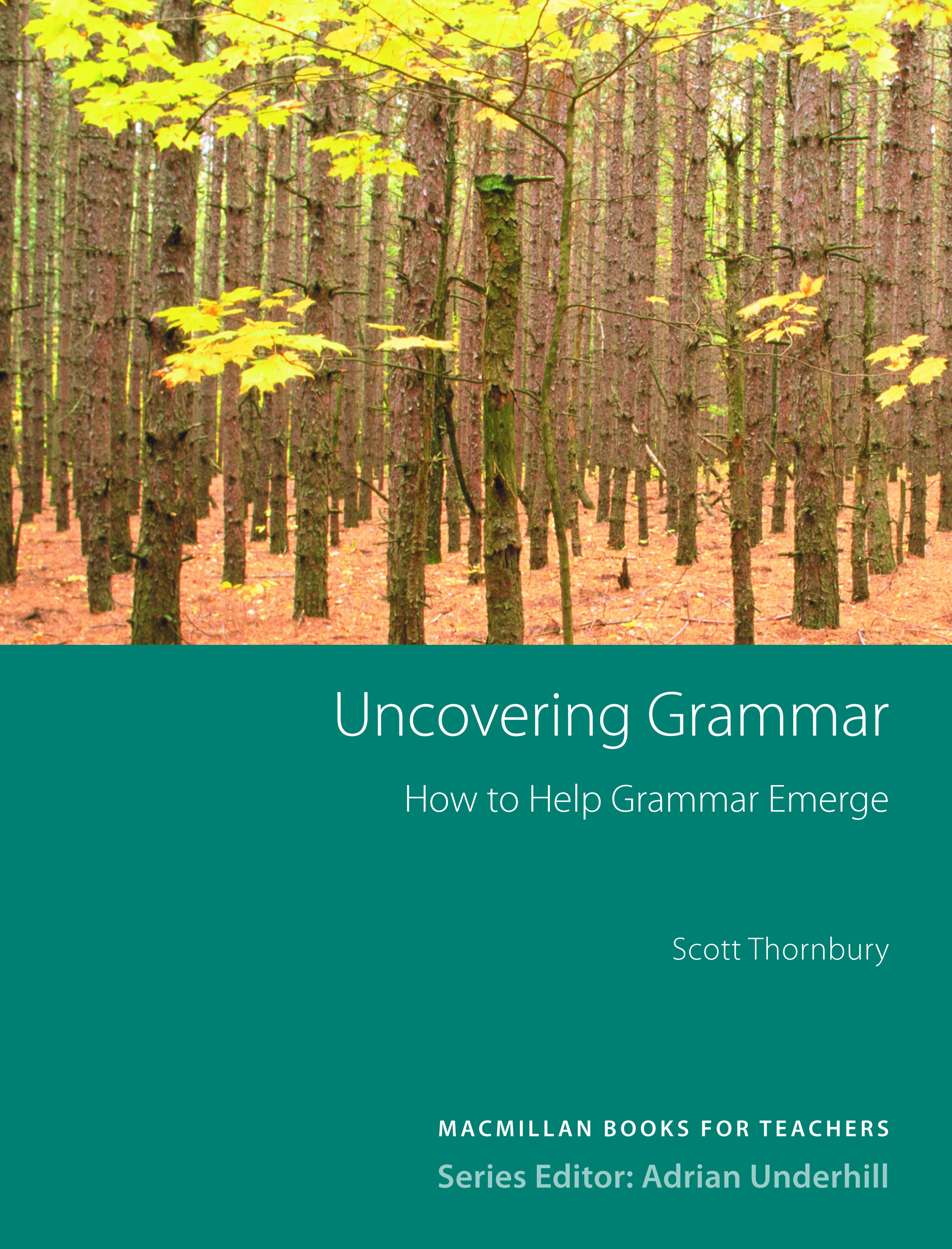 Uncovering Grammar New Edition